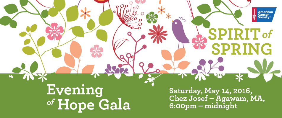 Evening of Hope Gala - 2016  acs banner2